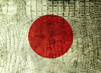 'LOCK-ICON' from the web at 'https://claremont.org/img/pages/thumb/1392Japan_Flag_Crocodile_Background_Cropped.png'